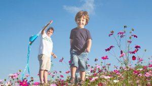 Risperidona-niños autistas (1)